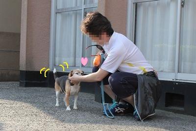 ai-20130515-oniwa03.jpg