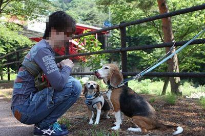 friai-20130609-tainai02.jpg