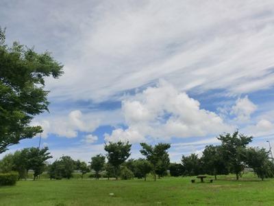sky-20130719.jpg