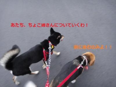 DSC01495_convert_20110731212058.jpg
