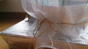 2013-09-30 つるなしいんげん防虫ネット下部