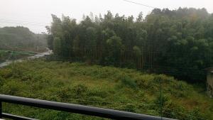 2013-10-24 雨の風景