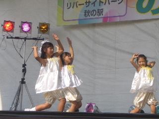2010_1107bee写真0031