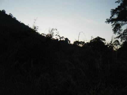 DSCF24120.jpg