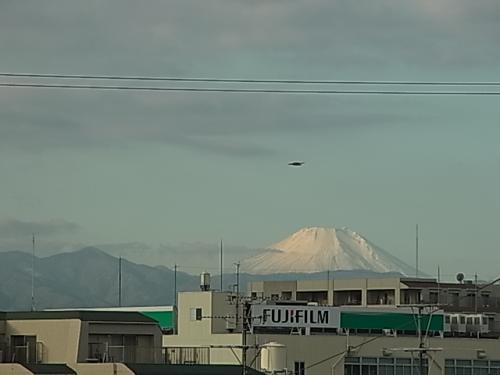 富士にとんび