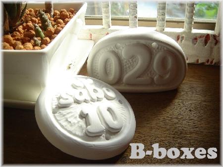 plate 029 sabo white-01