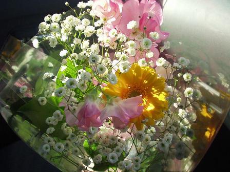 チュワちゃんのお花