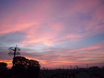 2010年09月12日_P1090137-0.jpg