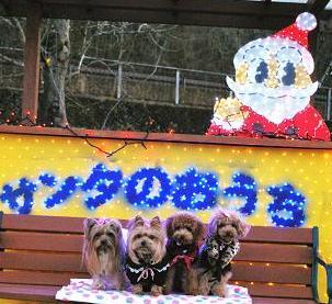 2011年12月04日_DSC_0189-0.jpg