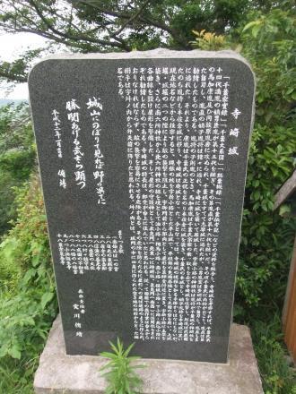 20110613散歩5