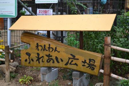 20110718内裏公園1
