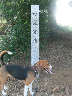 20110811本佐倉城跡7
