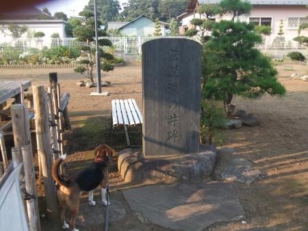 20110811本佐倉城跡17
