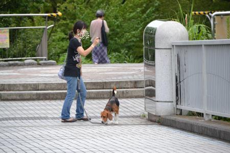 20110820南大沢1
