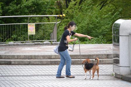 20110820南大沢2