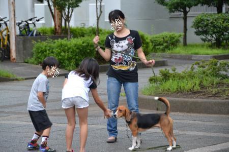 20110820南大沢8