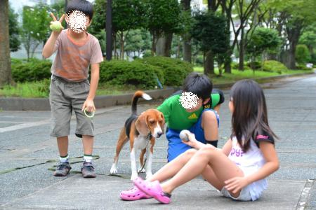 20110820南大沢13