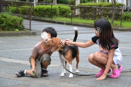 20110820南大沢14