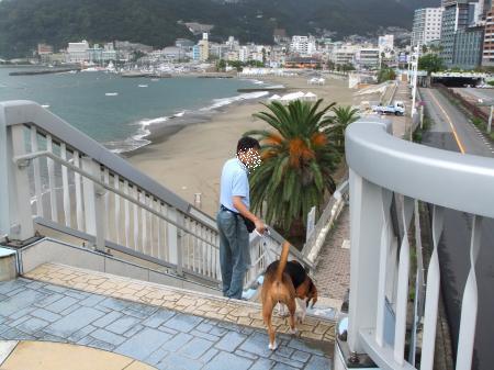 2011伊豆旅行7