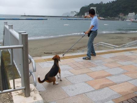 2011伊豆旅行8