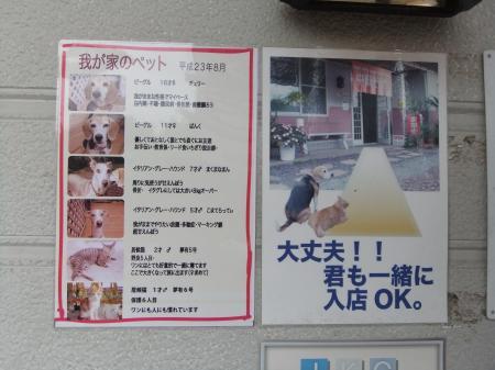 2011伊豆旅行41