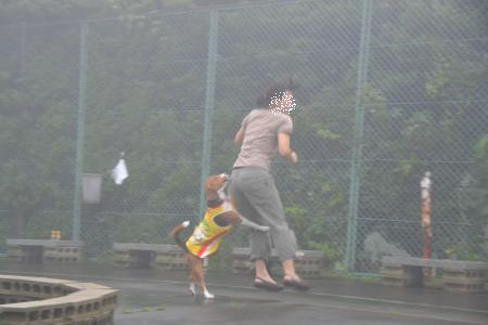 2011伊豆旅行47