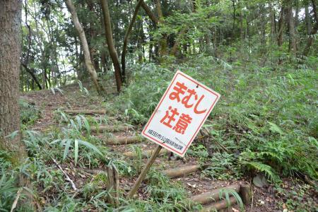 20110906坂田ヶ池09