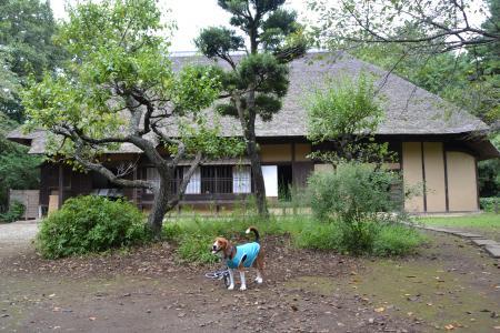 20110906坂田ヶ池14