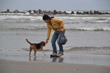 20111019片貝海岸06