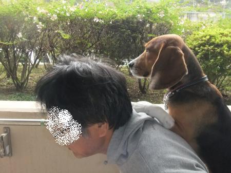 20111020おんぶ02