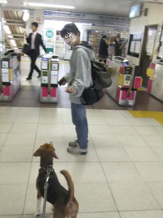 20111020お見送り04