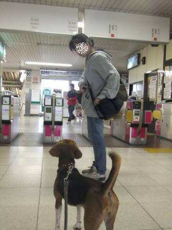 20111020お見送り05