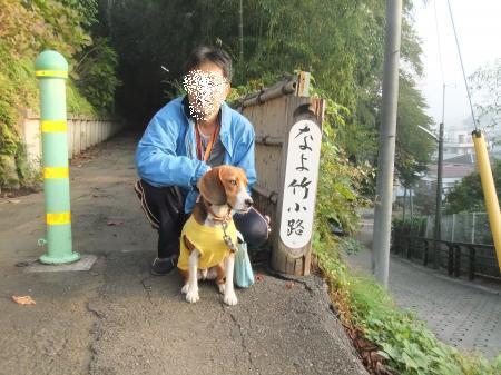 20111113朝散歩08