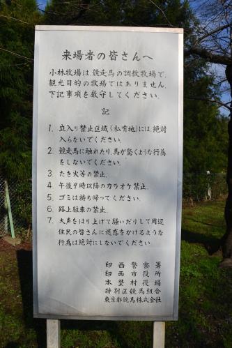 20111123小林牧場02