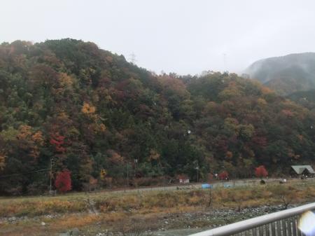 20111203丹沢02