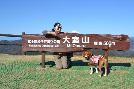 20111204伊豆20