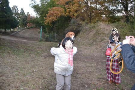 20111211すいらん34