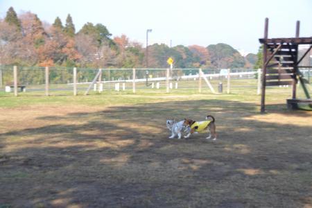 20111215北総02