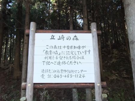 20111219七井戸公園11