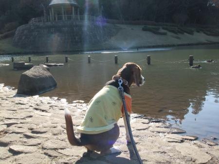 20111219七井戸公園09