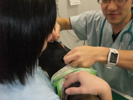20111223病院04