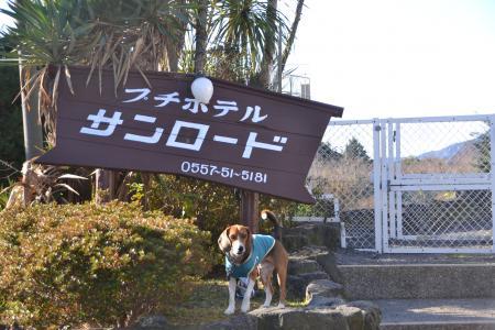 20111225伊豆01
