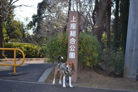 20120112上座公園01