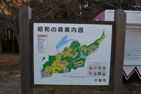 20120113昭和の森公園