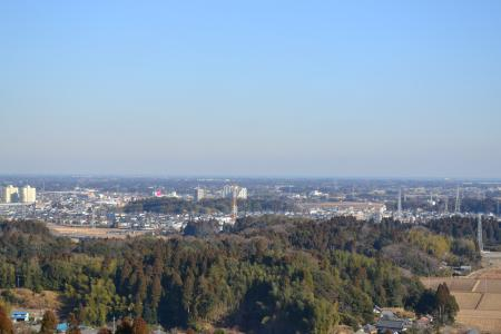 20120113昭和の森公園21