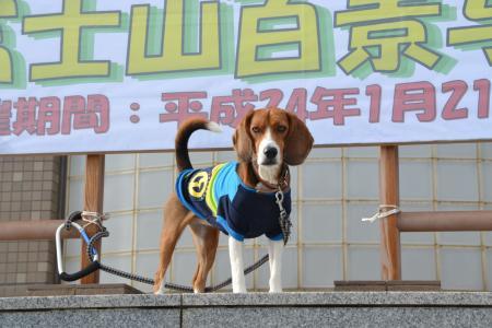 20120123犬吠崎02