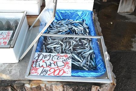 20129127大原海岸NIKON 046