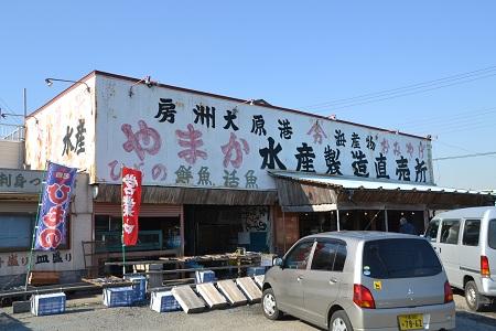 20129127大原海岸NIKON 047
