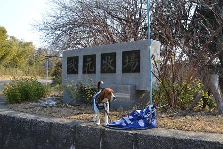 20120201秋元牧場01