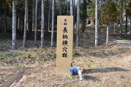20120201秋元牧場14